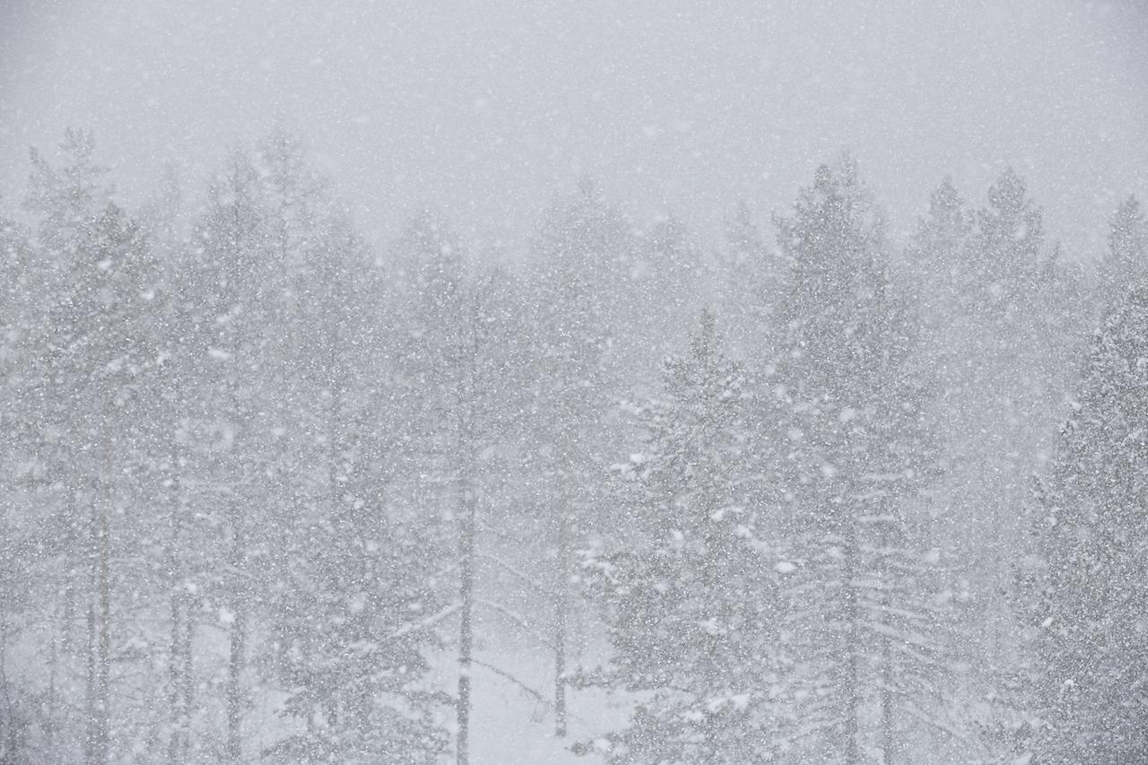 Снегопад по Алдански!