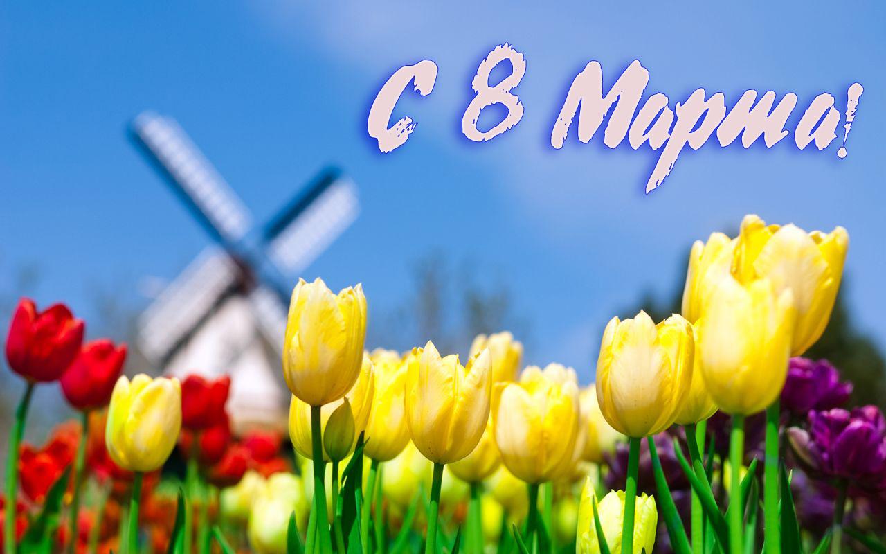 поздравляю Вас с 8 марта